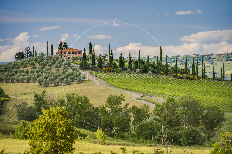 Bandiere Lamborghini e Italia
